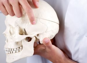 Fontanella cranica laterale posteriore (mastoidea) del neonato